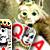 Пасьянс: Возвращение в Королевство - Новый пасьянс с волшебными картами, при помощи которых Вам предстоит отыскать верный путь в забытое Королевство.