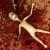 """Битва на Выживание - Отличная игра для истинных ценителей жанра """"шутер""""."""