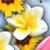 Цветочная Долина - Собираем цветы, которые помогут превратить заросший сорняками парк в прекрасный сад.