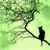 Зеленая Луна - Захватывающий квест в лучших традициях этого жанра