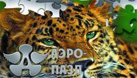 Обложка игры Аэро-пазл