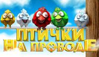 Птички На Проводе - Веселые приключения забавных пташек в сельской местности.