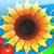 Солнечная Ферма - Попробуйте себя в роли земледельца, управляющего беспокойным хозяйством.